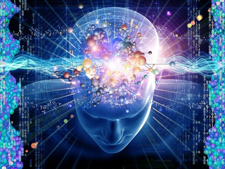 Brain_3.jpg